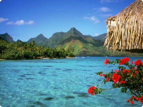 Доминикана: BARCELO PREMIUM PUNTA CANA 4*